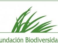 ¿En qué consiste el proyecto LIFE+INDEMARES de la Fundacion Biodiversidad?