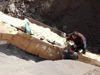 Encuentran en Lleida el cuello de un titanosaurio de más de 5 metros