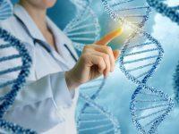 El examen genético y sus características