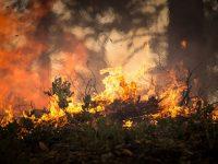 Cerca de 300.000 personas evacuadas en los incendios de California