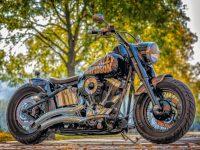Harley-Davidson se une a la sostenibilidad con sus motos eléctricas en 2020