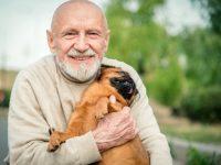 Opiniones sobre la terapia con animales y el trabajo con las familias del Grupo Reifs