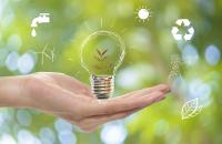 Goldenergy, energía 100% verde que crea un futuro mejor para todos, ¡y a muy buen precio!